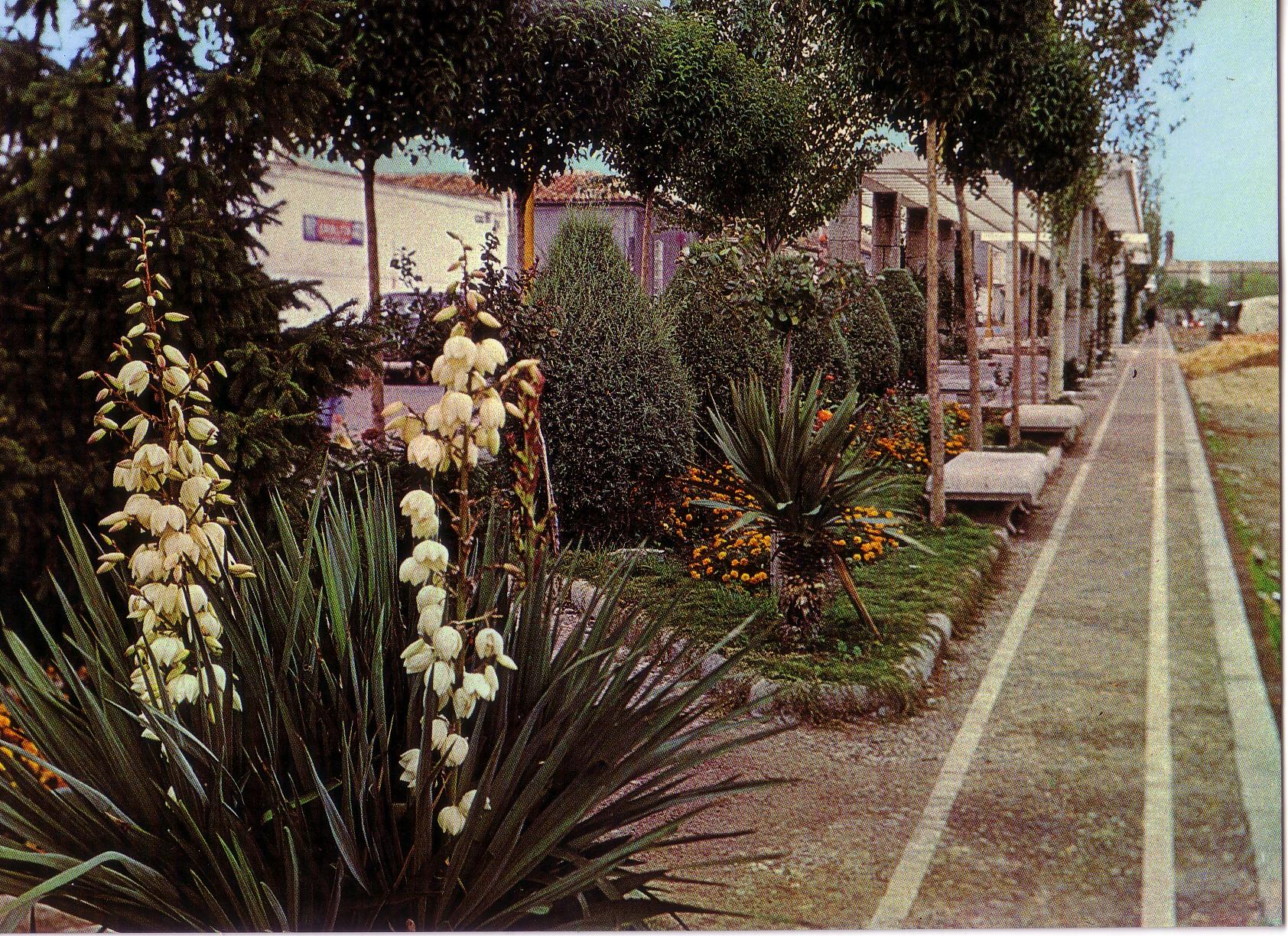 Zona ajardinada y Pérgolas. Archivo F. Negrete
