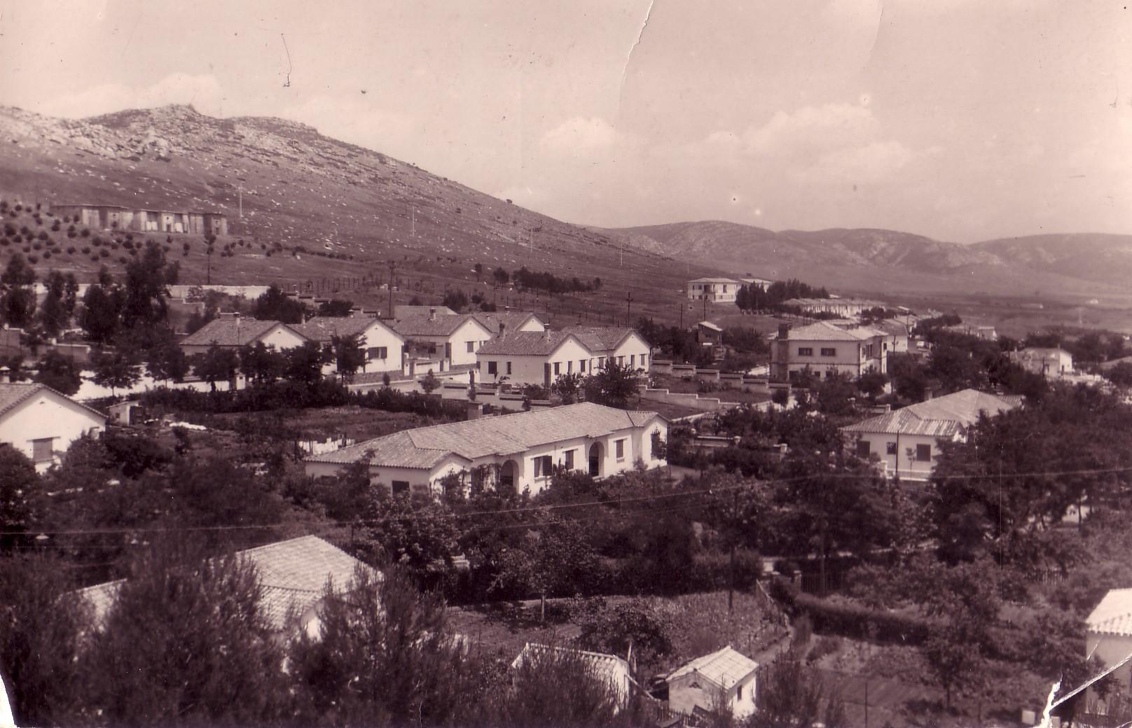 Chalets y jardines del Poblado Años 50