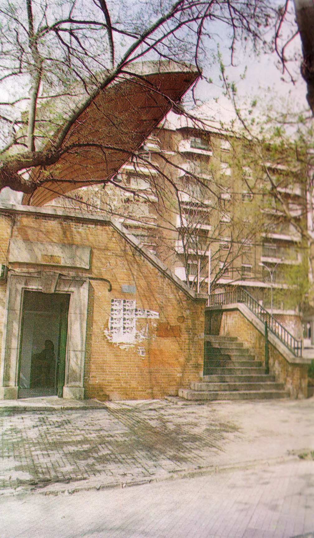Biblioteca Municipal 1968