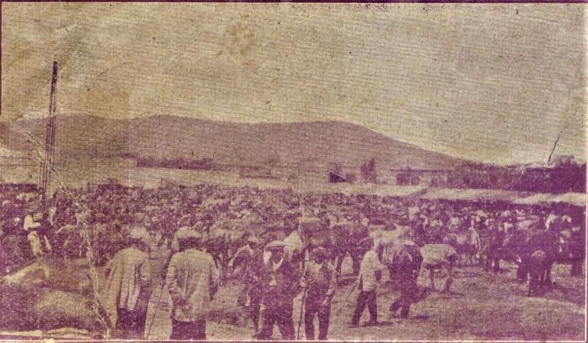 Feria de ganado.1934. Archivo Museo Municipal Puertollano