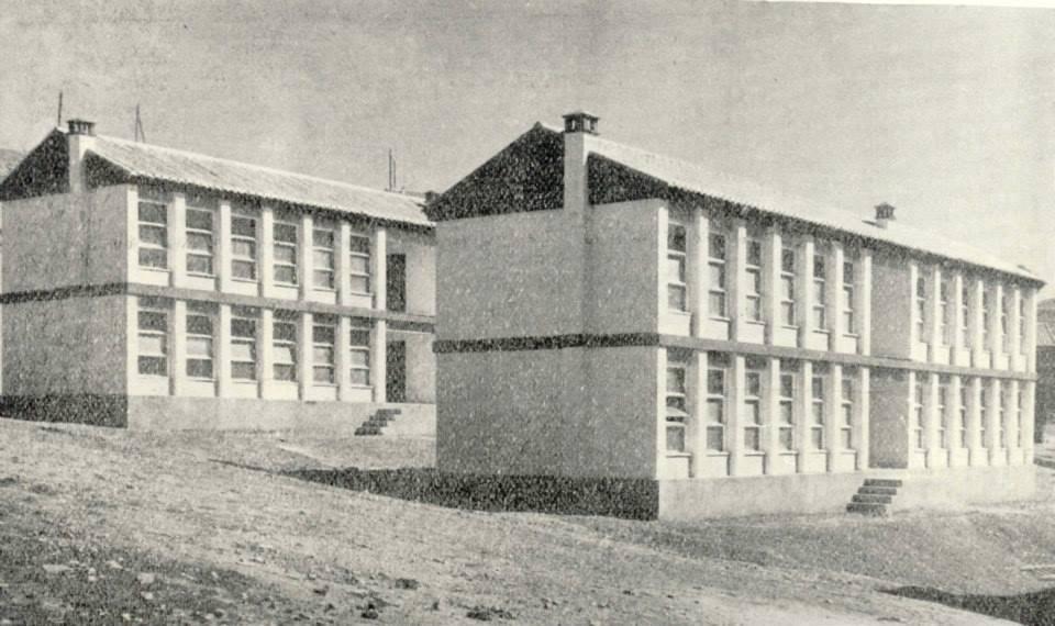 Colegio -Doctor Limón. Barriada del Pino