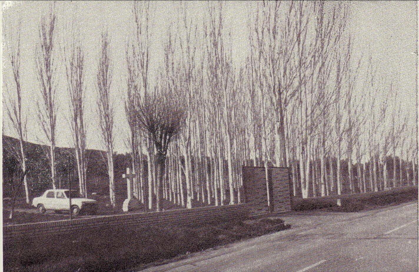 Cerramiento Parque la Rincona 1977
