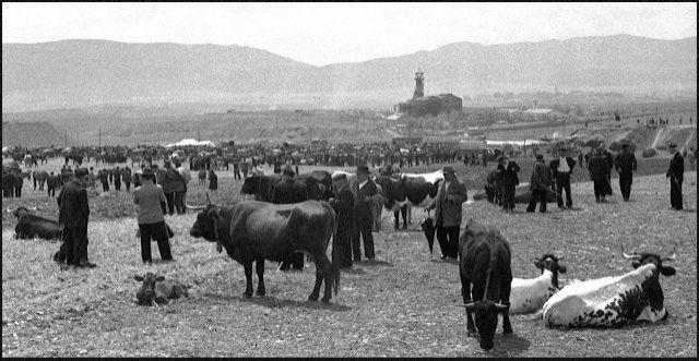 La Cuerda. Al fondo se ve el Pozo Norte. Fotografía Carlos Saura. 1957